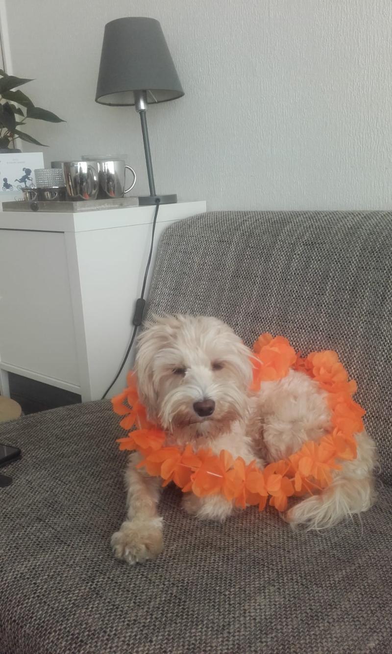 Fleur ( Hazel)